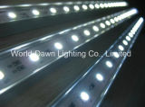 Indicatore luminoso rigido della barra della striscia LED dell'alluminio LED di bianco di SMD 5050
