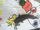 軽い捕獲物によってフリーズされるナマズ、高品質によってフリーズされるナマズ