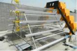 De beste Kooien van de Kip van de Laag van de Batterij van het Type van Ontwerp Duurzame Automatische H