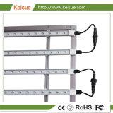 Keisueのプラント成長のための専門の照明設備