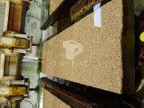 Le granit de plancher en carrelage mural/PLANCHER/Paving/Salle de bains /Wall Tile