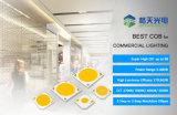 P100w forma 20W 30W 40W 50W 70W 80W 4046 COB LED para iluminación industrial y la iluminación exterior
