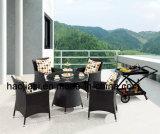 Patio extérieur / jardin //& en rotin Table aluminium HS6203dt