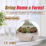 Am: 10 slim-bos Ecologisch Luchtzuiveringstoestel met HEPA Filter, Negatieve Ionen om Formaldehyde, Pm2.5, Tovc mf-s-8700 te verwijderen