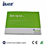 Fabrik angegebene Videokarte-videobroschüre 6 Zoll LCD-Bildschirm