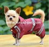 L'animale domestico bello dell'impermeabile dei vestiti del cane copre l'impermeabile del cane