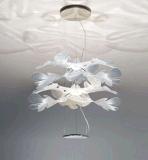 فندق رف تقليديّ حديد مدلّاة ضوء ([9207ب-2])