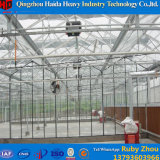Multispan 토마토를 위한 상업적인 유리제 녹색 집