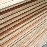 [18مّ] [بويلدينغ متريل] تجاريّة خشب رقائقيّ زخرفة مادة