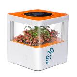 Am: Ароматичный очиститель воздуха 10 с отрицательными ионами, фильтром HEPA и активированным углем для домашней пользы Mf-S-8600