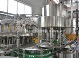Volledige Automatische Sprankelende Plastic het Afdekken van de Etikettering van het Flessenvullen Machine