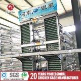 Grand matériel de ferme pour le matériel de sortie automatique de poulet de l'Afrique