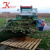 Récolteuse de mauvaises herbes hautes performances& la jacinthe d eau pour l'exportation de navires de coupe