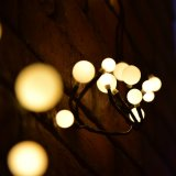 La stringa del LED illumina gli indicatori luminosi leggiadramente Dimmable impermeabile del rattan 72 lampadine del LED per natale della decorazione, bianco caldo
