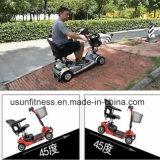 """""""trotinette"""" elétrico da mobilidade de quatro rodas para o homem deformado"""
