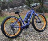 Bicicleta eléctrica de la montaña del neumático gordo de la diversión 8 de China