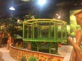 Het Ongehoorzame Kasteel van het Pretpark van het Thema van de wildernis Voor het BinnenCentrum van het Spel