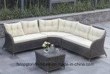 Insiemi esterni del sofà del rattan della mobilia del patio (TG-JW13)