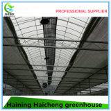 고품질 플라스틱 장 관 판매를 위한 상업적인 녹색 집
