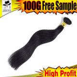 آلة جعل [برزيلين] انبثاق أسود ريمي شعر
