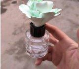 La meilleure vente de la bouteille de diffuseur de roseau d'huile essentielle pour l'aromathérapie