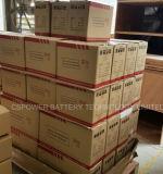 Lange Lebensdauer-Gel-Batterie 12V200ah für Sonnenkollektor-/Aufladeeinheits-Controller