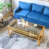 コーヒーテーブルが付いているXinzhaoの居間の家具