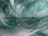 青い採取装置のTeryleneの単繊維のネットの魚のネット