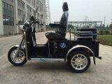 Hot Sale Mini handicapés Tricycle avec 4 coups de 110 cc