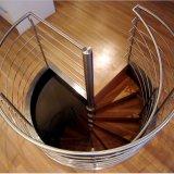 Escadaria da espiral da fonte da fábrica com os trilhos de madeira do aço inoxidável do passo