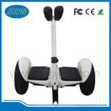 """Um auto esperto de duas rodas que balança o """"trotinette"""" elétrico Hoverboard vai Kart"""