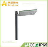 12W All in One LED Solar Street Lamp for Outdoor Lighting gold Wall Hanging