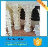 De decoratieve Roman Pijler van de Kolom met Steen, de Natuurlijke Roman Pijler van het Graniet & Kolommen
