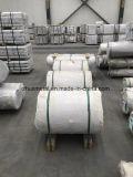 La aleación de aluminio de bobinas laminadas en caliente