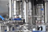 Línea de producción de jugo de sandía automático