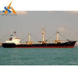 Teuのマルチ目的の貨物専用コンテナの船