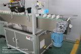 직접 기계를 레테르를 붙이는 계란 쟁반과 판지 공장
