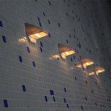 운동 측정기를 가진 작은 태양 LED 벽 빛