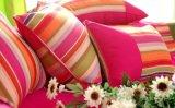 Stili Colourful delle federe della busta poliestere/del cotone