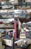 Un destacado fabricante de Máquina esmeriladora de superficie desde 1999