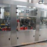 Встроенный лимонад оранжевый фруктовый сок розлива завода