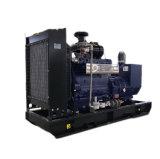 Cer Arppoved Methan-Natur-Gas-Generator