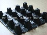 Migliore scheda di vendita di drenaggio della fossetta dell'HDPE di qualità buona per lo sterro