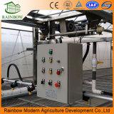 Irrigação de gotejamento ajustada para a estufa da agricultura
