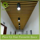 Het aluminium o-Gevormde Lineaire Plafond van de Buis van het Schot van het Plafond van de Pijp voor Decoratief Ontwerp