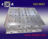 Icf EPS moule en aluminium
