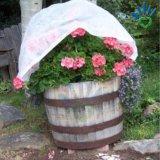 Couverture non-tissée d'horticulture de couverture d'usine de tissu de pp