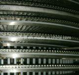 Gewundene Tiefkühlverfahren-Kamm-Muschel-Fische der Böe-Tiefkühltruhe-IQF