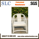 Confortable jardin extérieur en aluminium des meubles en rotin (SC-B8959)