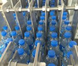 Машина упаковки обруча автоматической бутылки Roy-25b застенчивый
